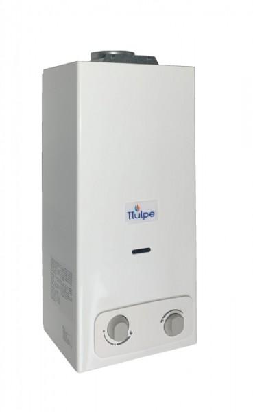 Gas Durchlauferhitzer innen B6 P30/37 Eco