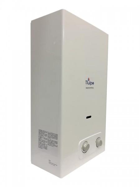 Gas Durchlauferhitzer innen B11 P30/37 Eco
